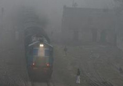 Visibility drops down due to heavy fog in Rajasthan