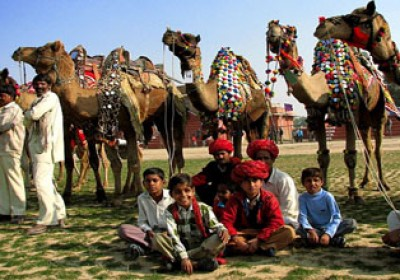 Colourful Bikaner Camel Fest to start today