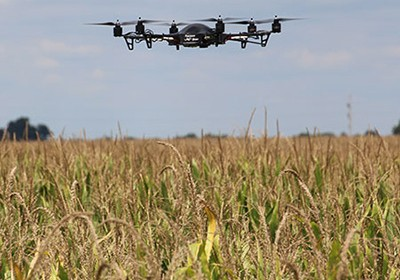 Drones over crop fields to help farmers